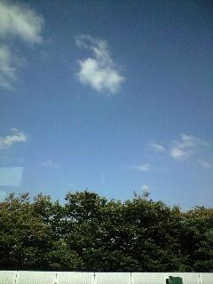 上天気〜♪
